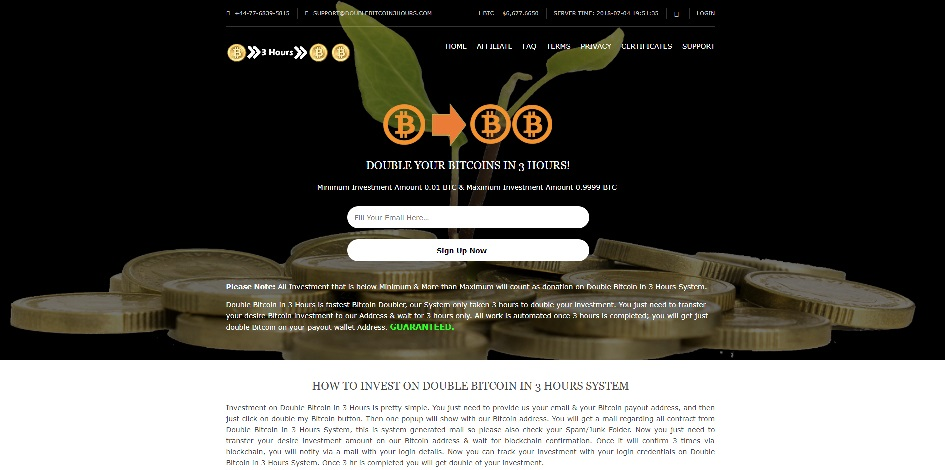 DoubleBitcoin3hours.com - Double Bitcoin 3 Hours scam