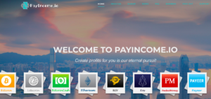 Pay Income Review